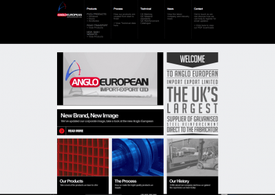 Anglo European Website (Old)